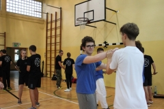Seminarium_Ray__2017 (17)-min